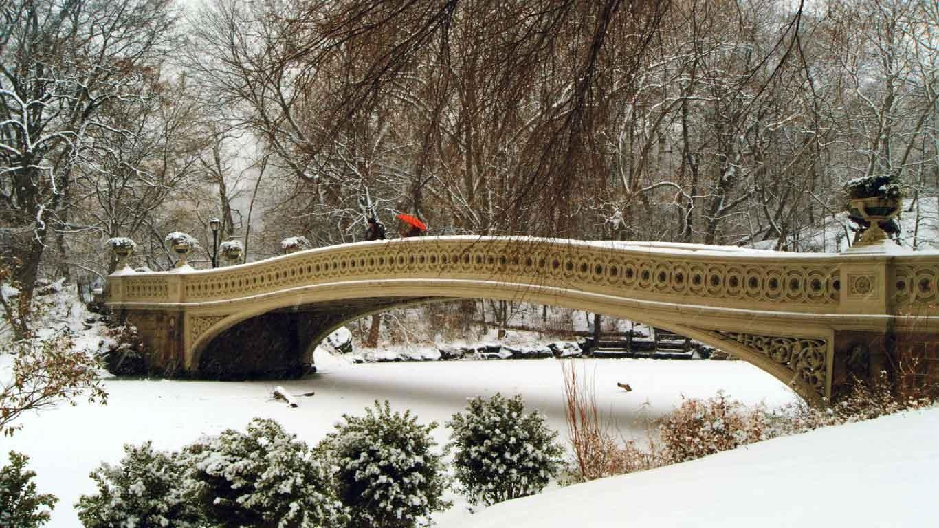 纽约中央公园的弓桥图片